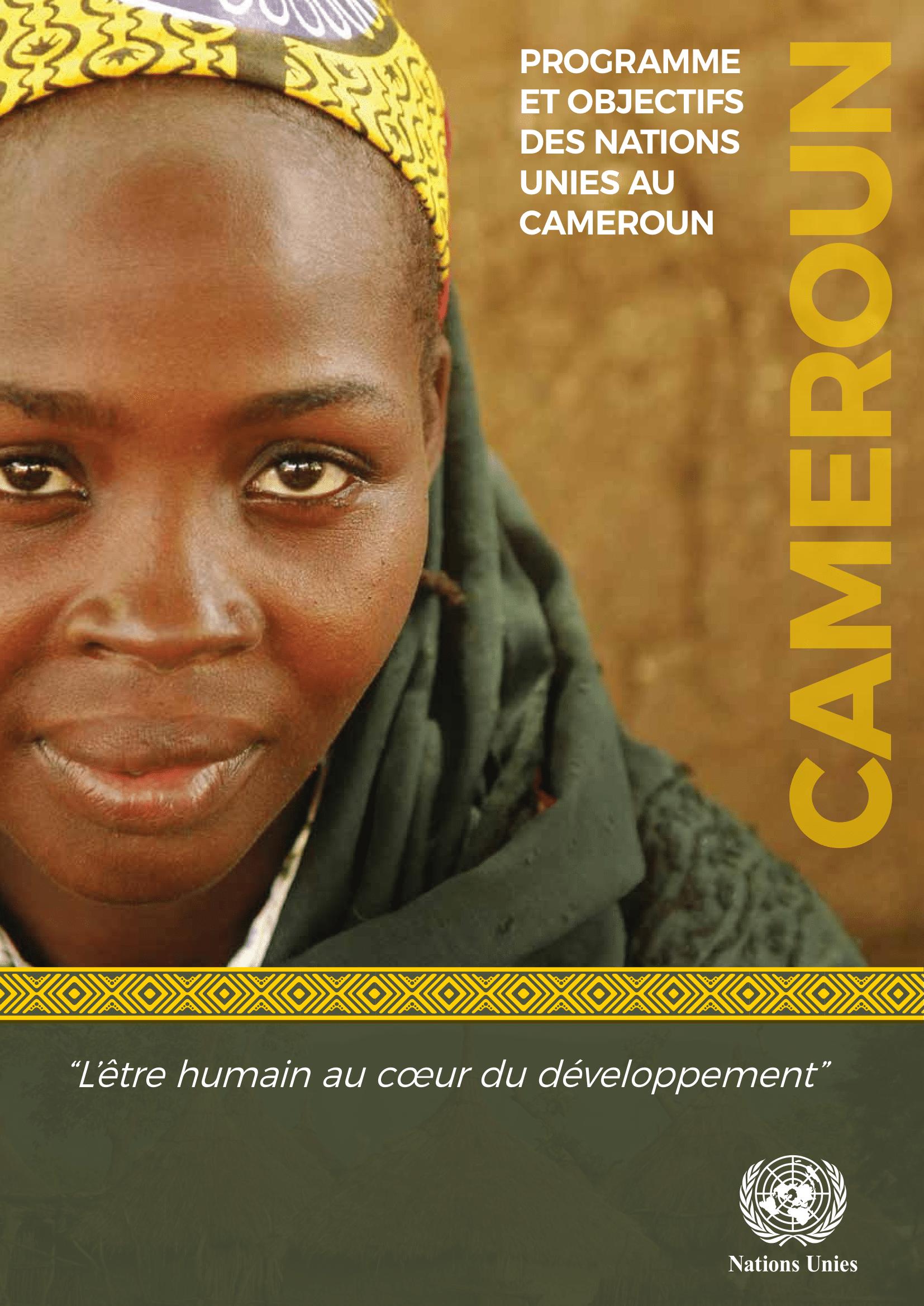 Rapport-ONU-Cameroun-2018