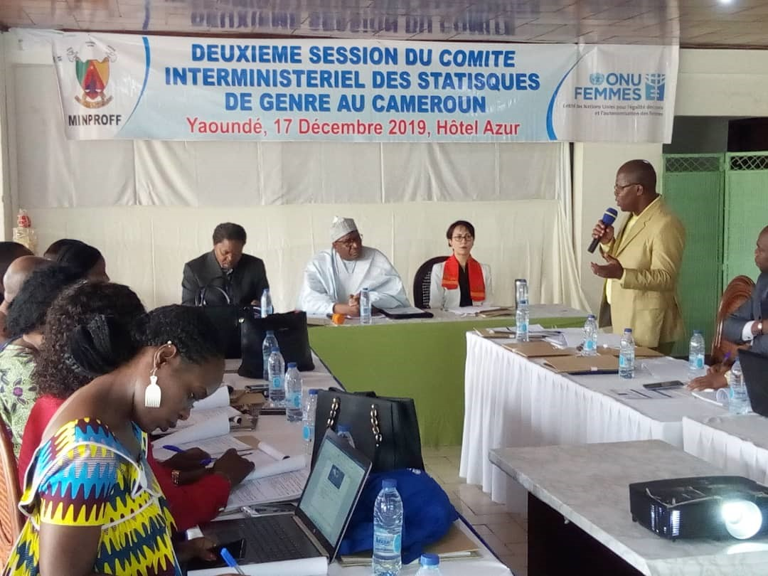 The Inter-Ministerial Committee on Gender Statistics in Cameroon organized its second session