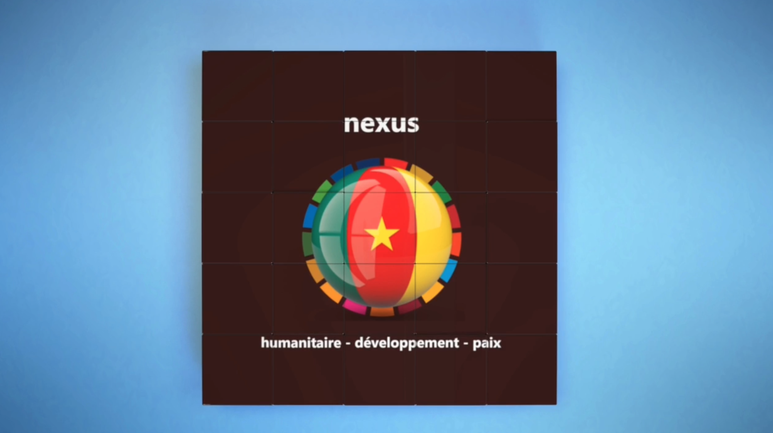 FROM STRATEGIC PLANNING TO IMPLEMENTATION - Cameroun operationalizes the humanitarian-development-peace nexus
