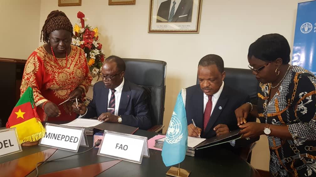 Lutte contre le changement climatique: le Cameroun et la FAO signent un Accord de partenariat