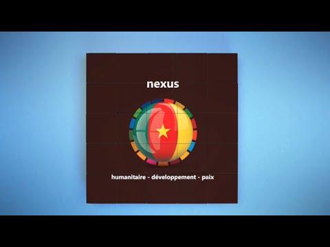 HDP Nexus L'histoire de Rose